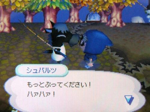20061022_oimori